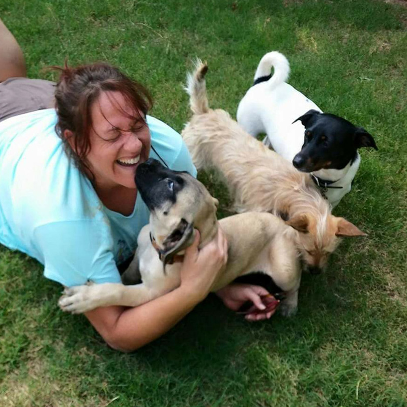 Something To Bark About | Dog Walking and Pet Services In